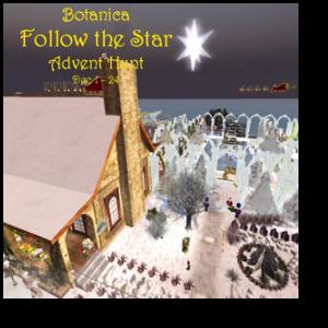 follow-the-star